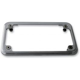 LIGHTED LICENSE PLATE FRAME
